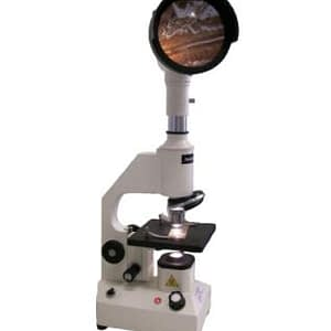 Microscopio Triquinoscopio Arcano