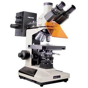 Microscopio trinocular L2001B YL con fluorescencia Arcano