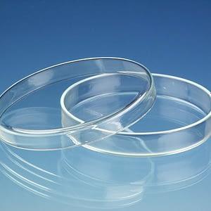 Caja de Petri de vidrio 60×15 mm Origen China
